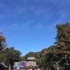 年の瀬の鎌倉