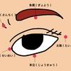 老眼+スマホ老眼対策