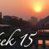 【Week 15】バングラデシュにもどってきました