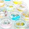 ◆可愛すぎる~「すみっコぐらし」の、オーガニックオイル配合マルチ保湿ケア「フルプル®クリーム」