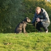 犬への躾の準備と注意点。「おすわり」の教え方