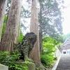 石畳と石段の続く坂道 【大山寺】の参道を散策! その2