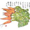 立春と大麦の追肥と『フラワーショウ!』と『続・無肥料栽培を実現する本』とニンジン