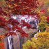 日本三名瀑 袋田の滝