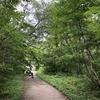 五色沼自然探勝路を散策して来た【福島県北塩原村】
