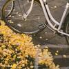 自転車でも手が冷えない!風を通さない防風&防水手袋7選!