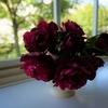 デュブリュイとマルメゾン二番花