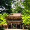 岐阜県美濃市 緑の美しい、大矢田神社