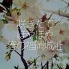 085食目「咲きたてほやほや 春の福岡城址」