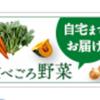らでぃっしゅぼーやの野菜がちょびリッチ経由で申し込むと実質無料!
