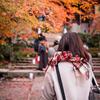 秋の嵐山と高台寺夜間拝観に行ってきた!