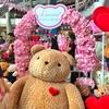 【クマのぬいぐるみと薔薇】タイ人が選ぶバレンタインデーのプレゼントにほっこりした話。