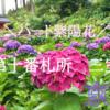 【西国三十三所巡り】関西屈指のあじさい寺、三室戸寺でハートの紫陽花を見つけよう!