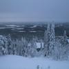 Laplandの森とFinlandia