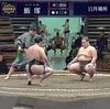 大相撲11月場所結果