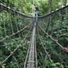 【雲林】自然いっぱいの華山で川遊び