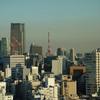 【写真複製・写真修復の専門店】ビルの間にそびえる東京タワー