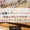【福レポ】衝撃と話題の『カレーパンサンド』を買ってみたら、本当にカレーパンがサンドされてた!