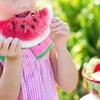 【ふるさと納税】ふるさと納税のレンチン返礼品で夏休みのお弁当作りの省力化をもくろむ