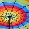 折り畳み傘の寿命って何年?10年目でついに腰を悪くした愛傘の話