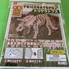 ダイソーの木製パズル トリケラトプス を組み立てる!