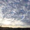 6月7日(日)晴れ 環境フェア(えこっくるの宇宙散歩)