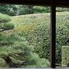 慈光院(2)茶庭の風景/ありきたりの図面を引き裂いてしまったか。小さな茶庭も、天に連なる茶庭も設えてあります。