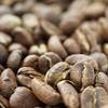 コーヒー焙煎日記2020/4/4 ルワンダ ビレンボ