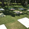 Picnic Sheet Exhibition