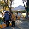 11月16日青天の浜松城公園🏯