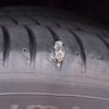 トヨタC-HR パンク修理跡を塗装しました