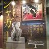 「シャガール 三次元の世界」行ったけど、こんな美術展は初めてだった。面白い芸術全体の見方を教えてもらったぜ!