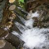 国分寺 お鷹の道と真姿の池湧水群
