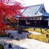 京都の紅葉 静かな穴場としておススメ 光明院