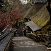 佐賀の旅 5 大興善寺へ訪れる。
