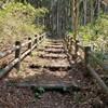 夏井地区農村公園、展望台へ。