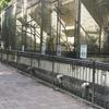 福岡市内特撮ロケ地巡りにおすすめの場所をピックアップしてみた