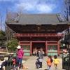 東京都 根津神社 子供たち