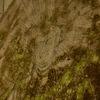 高さ1.4mの石板に刻まれる阿弥陀如来像 福岡県古賀市筵内(むしろうち)