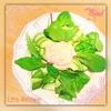 アボカドグリーンサラダのサーモンマヨディップのレシピ
