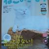 ねこのきもち7月号が届きました~付録は愛猫のための法律辞典のみ!先月の付録が豪華だった反動か。。