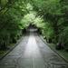 梅雨だから、仙台北山にある輪王寺を見に行く
