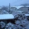 まともな初雪