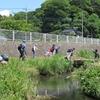 恒例の和泉川掃除をしました。