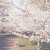 春こそトライ!整理整頓することで得られる6つのメリットがスゴすぎる件