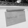 喪失の痛み、搾取による相対化、忘却による再生 『ソフィ カル―限局性激痛』展