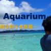 Fishing Aquarium~飼育員が創る釣り水族館~について