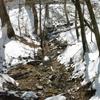 東熊遊山「魚上氷(うおこおりをいずる)」