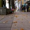 福井鉄道610形電車に乗って鯖江に昼飯を食べに行く 〜鯖江・味見屋の醤油カツ丼〜