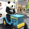 パンダの穴 ジャパンツアー2018